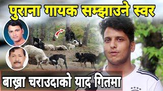 पुराना गायकको याद दिलाउने स्वर   गाई बाख्रा चराउदाको याद गीत मार्फत पोखे   Jumla Nepal