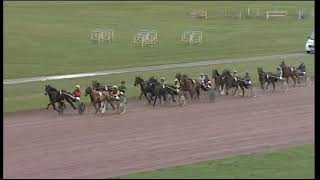 Vidéo de la course PMU PRIX DE GUINGAMP