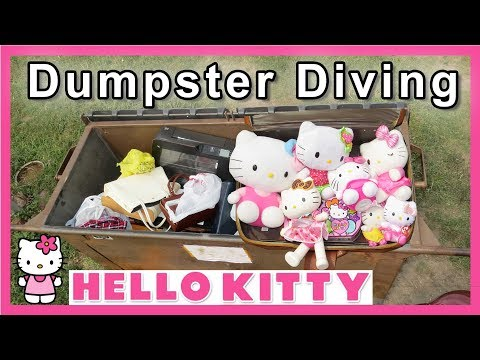 Dumpster Full Of Hello Kitty Dumpster Diving #185