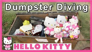 Dumpster Diving at Thrift Store #185
