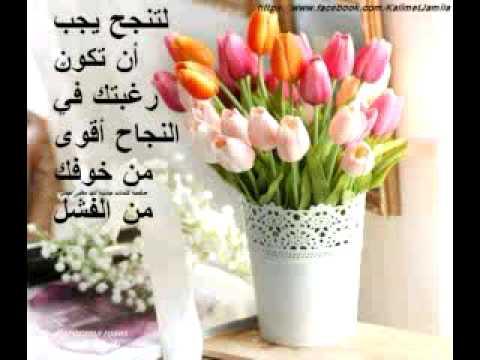 Rawai3 lhikam w a9wal driss nabil - YouTube