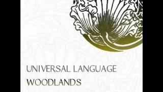 Universal Language - Smokey Field (Original Mix)