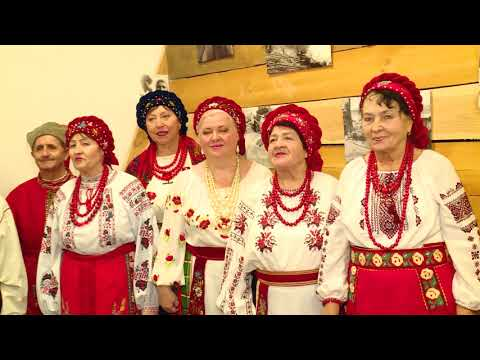 Телеканал TV5: Линия успеха №156 21.01.2019