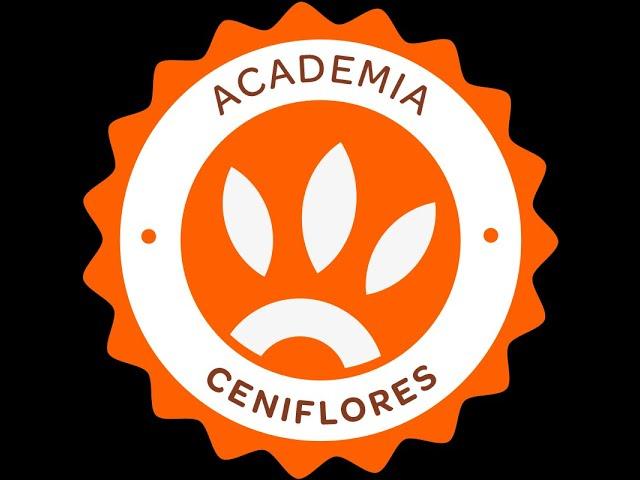 Invitación Andrés Saenz - Academia Ceniflores