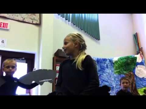 Lucianne introduces the bats!