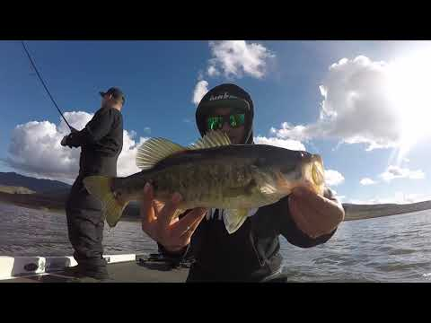 Drop Shotting For Bass At Lower Otay Lake