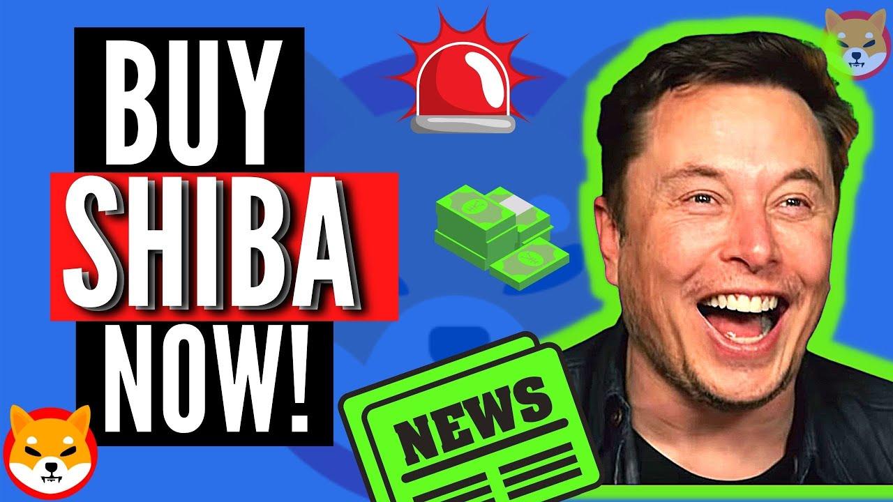 REVEALED! Elon Musk Says To Buy Shiba Inu Coin! | SHIB