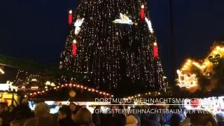 Biggest Christmas Tree of the World (Real Trees) | Germany | Dortmund Weihnachtsmarkt 2013