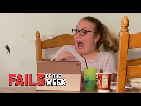 Don't Freak Out! Fails of the Week | FailArmy