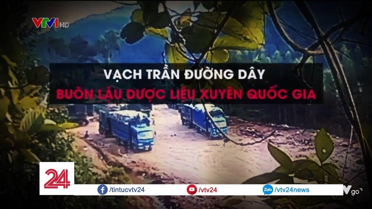 Vạch trần đường dây buôn lậu dược liệu xuyên quốc gia | VTV24