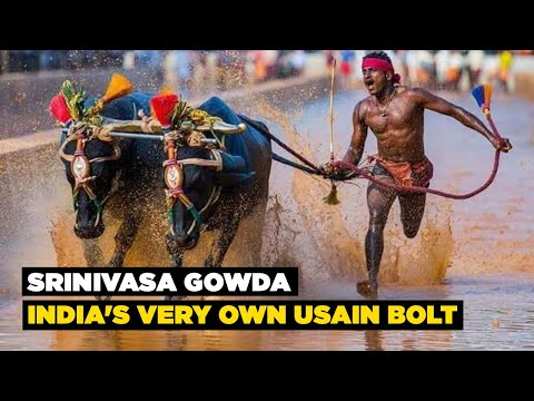2 Indian Buffalo Racers Reportedly Beat Usain Bolt's 100 Meter Record