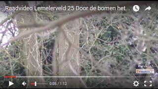 Raadvideo Lemelerveld 25 Door de bomen het bos