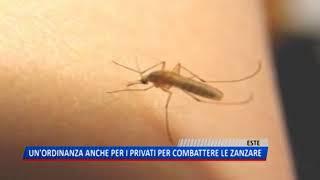 TG (13/08/2018) - UN'ORDINANZA ANCHE PER I PRIVATI PER COMBATTERE LE ZANZARE