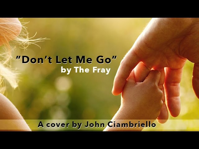 The Fray - Don't Let Me Go - Acoustic Cover