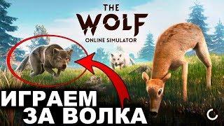 СИМУЛЯТОР ВОЛКА - The Wolf