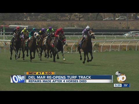 Horse Racing At Del Mar Track Resumes With Turf Changes