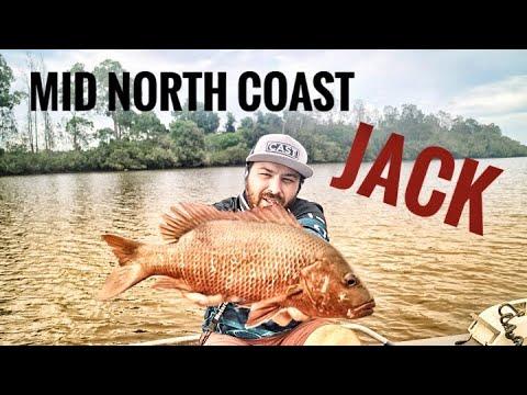 MID NORTH COAST MANGROVE JACK FISHING