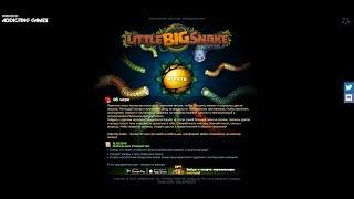 Little Big Snake. io, браузерная онлайн игра
