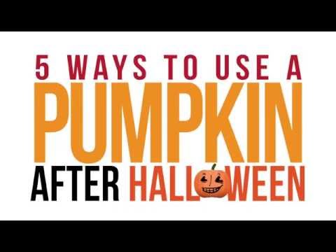Bob Delmont - Put your Pumpkin to good use AFTER Halloween!