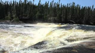 Atlantic Salmon Run.Big Falls.Sir Richard Squires Provincial Park. Newfoundland