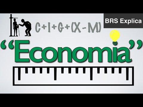 """O que é a """"Economia"""", afinal de contas?!?"""