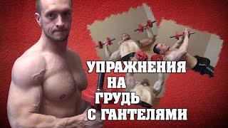 Упражнения для груди с гантелями(Упражнения для груди с гантелями в домашних условиях и в тренажерном зале. Техника выполнения и комментари..., 2015-05-28T11:28:33.000Z)