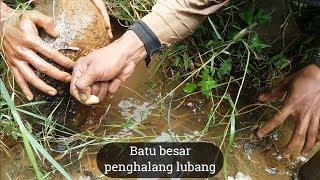 Mancing Belut Besar di Lubang Belahan Batu