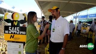 Expodireto Cotrijal 2014 - Nidera Sementes