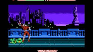 Gameplay: Teenage Mutant Ninja Turtles: Tournament Fighters NES