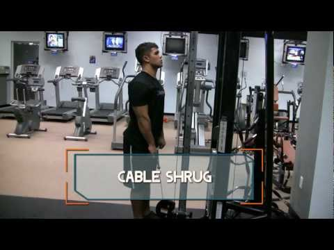 Cable Shrug