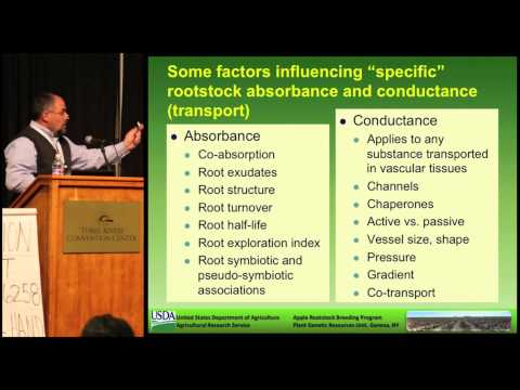 ROOTS: Optimal Tree Nutrition and Fruit Production Begins Underground-- Dr. Gennaro Fazio