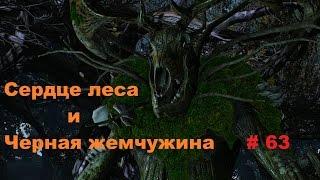 Прохождение The Witcher 3: Wild Hunt Сердце леса # 63
