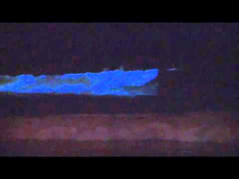 Bioluminescence   chemical reaction   Britannica.com