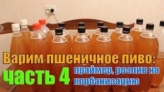 Варим пшеничное пиво: часть 4 (праймер и карбонизация)
