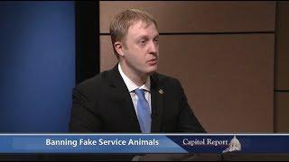Banning Fake Service Animals