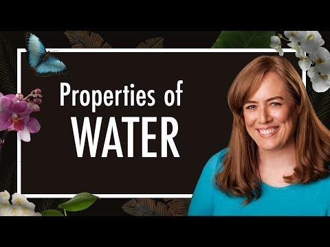 Properties of Water   Hydrogen Bonding in Water   Biology   Biochemistry