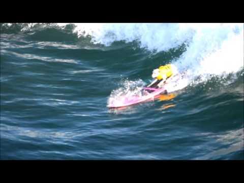 Sugar the Surfing Dog  8-27-16