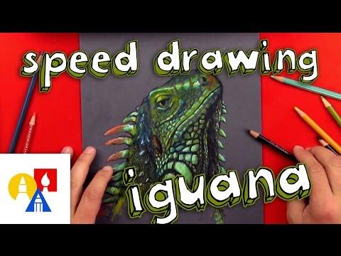 Bonus - Iguana Drawing With Colored Pencils on Black Paper