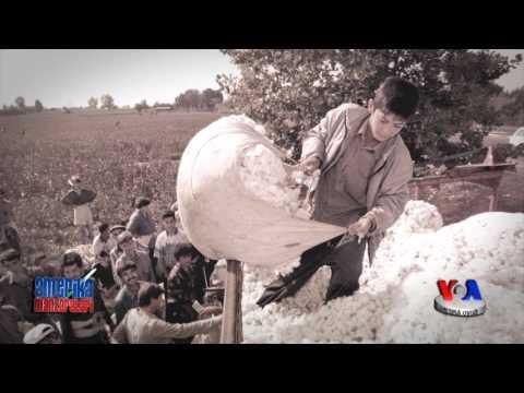Huquq va siyosat: Yevropada Xavfsizlik va Hamkorlik Tashkiloti