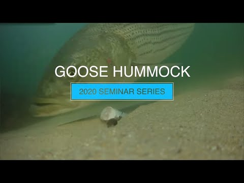 Cape Cod; A Fishing Wonderland | Goose Hummock Seminar Series  | 2020 New England Boat Show