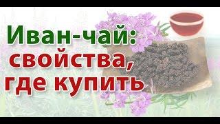 Иван-чай: свойства, где купить Иван чай(, 2015-08-18T07:36:20.000Z)