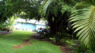 Big Island Real Estate Agent Showcases Leilani Estates Kupono Street Hawaii Realtor Pahoa