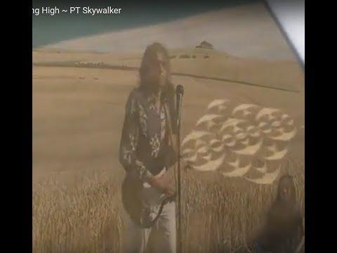 Birdtribe is Flying High ~ PT Skywalker