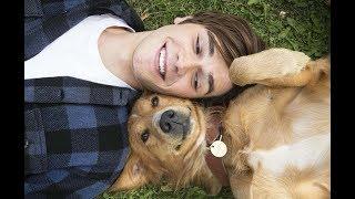 Русский трейлер - Собачья жизнь 2