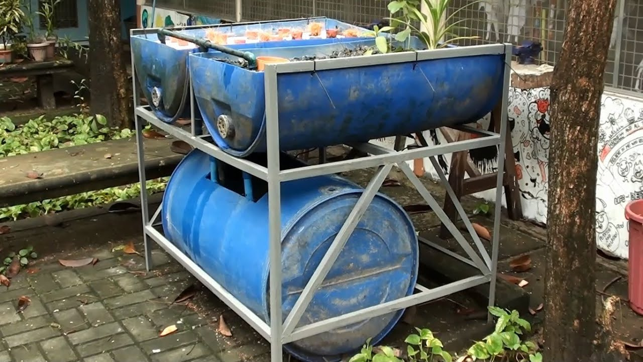 DIY Blue Drum Aquaponics by MADE - YouTube