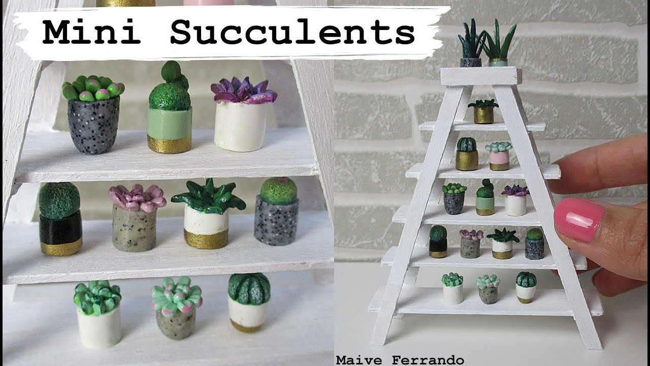Mini Succulents Amp Bookshelf Tutorial Using Lolly Sticks