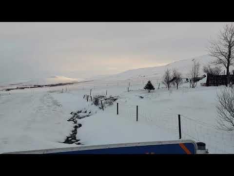 Sheep & Horse Farm Kopareykir - Holiday Homes - Reykholt Island