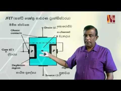 Field effect transistors ( FEP) By Prof.  S D Rosa