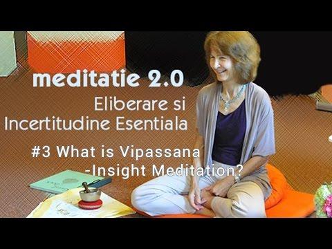 #3 - What is Vipassana / Insight Meditation?