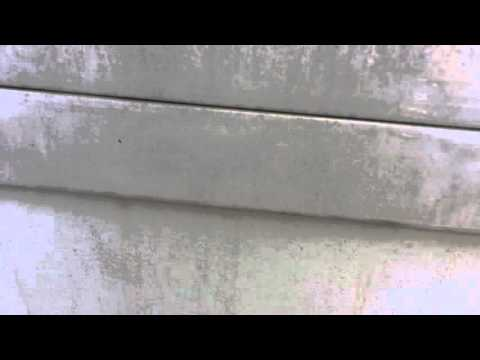 Removing Mildew From Exterior Siding La Jolla Painting Project Youtube